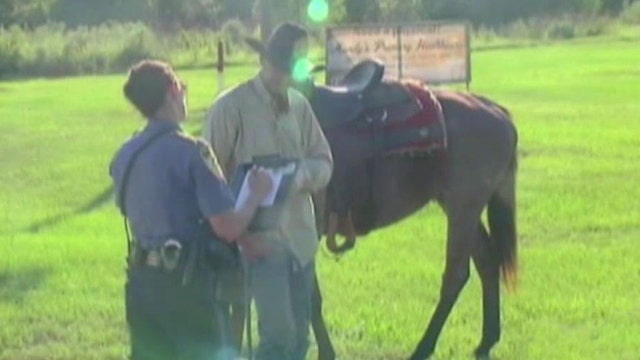 Drunk cowboy ticketed for riding horse while intoxicated