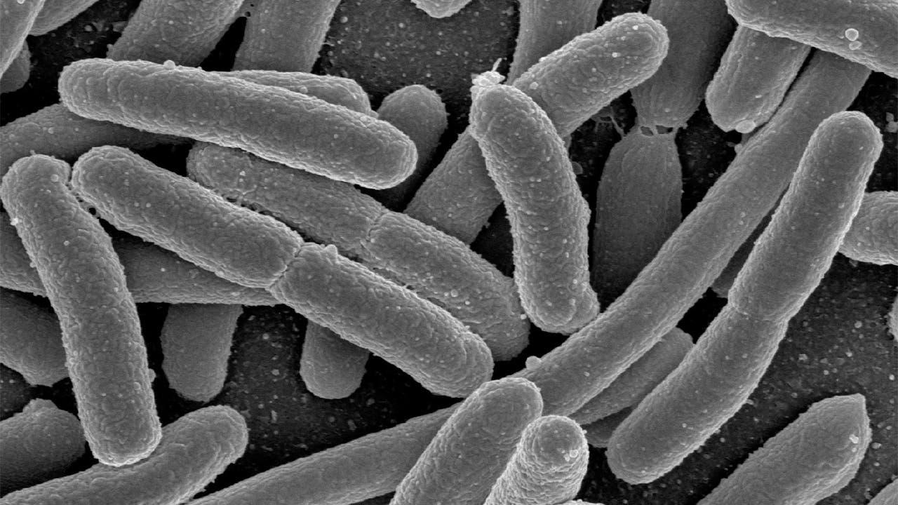 Antibiotic resistance puts patients at risk