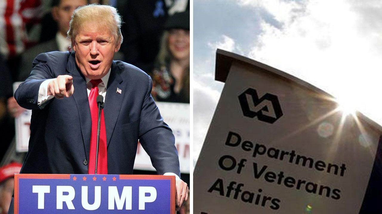Image result for donald trump veterans affairs