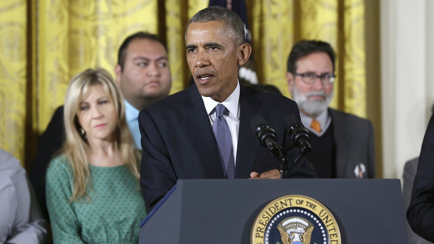 President outlines executive action on gun control