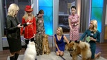 Three dogs from the AKC's 'Meet the Breeds' event join us on the 'After the Show Show'