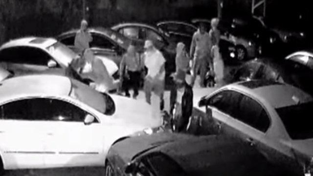 Watch brazen thieves raid dealership, steal eight vehicles