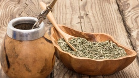 Yerba mate is a popular tea in Brazil, Paraguay and Argentina and helps to revive your brain and fight chronic fatigue.  However it can also be used to decrease body fat. Dr. Manny talks with the Medicine Hunter, Chris Kilham about its benefits