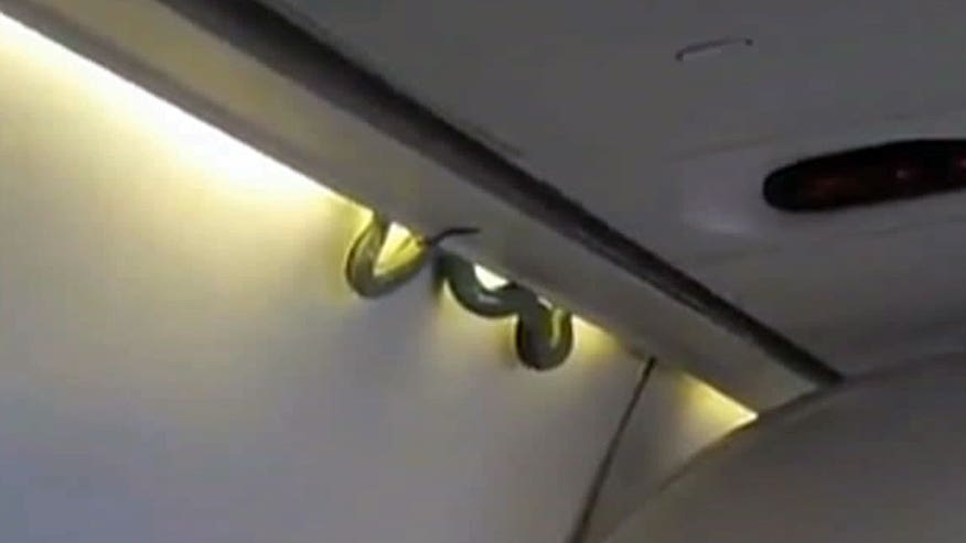 Scary sight on Aeromexico flight (credit: Indalecio Medina)