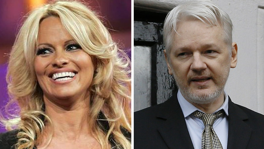 Actress Pamela Anderson urges the release and pardon of Julian Assange, calling of Wikileaks editor-in-chief a 'hero' for exposing 'truths' to the world