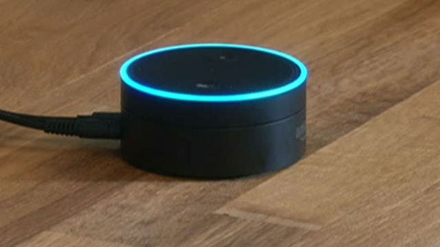 Amazon Echo device 'Alexa' a key witness in murder case?