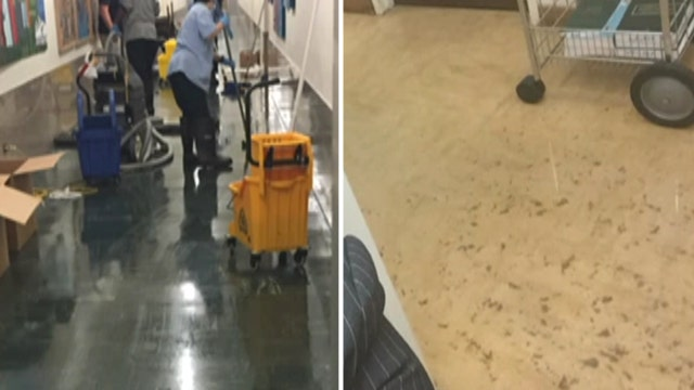 Justice stinks: Raw sewage floods district attorney's office