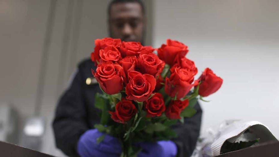 Customs and Border officials inspect Valentine's Day flower imports into U.S.