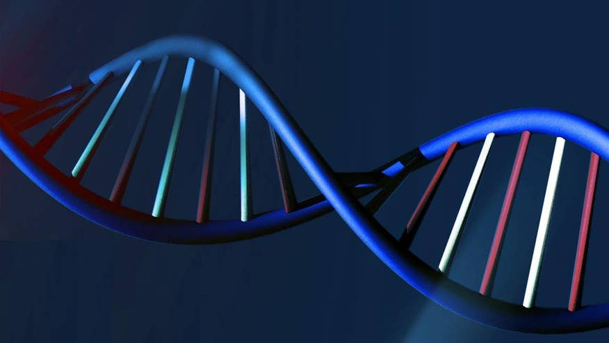Gene editing sparks concerns over designer babies; Kennedy reacts on 'Shepard Smith Reporting'