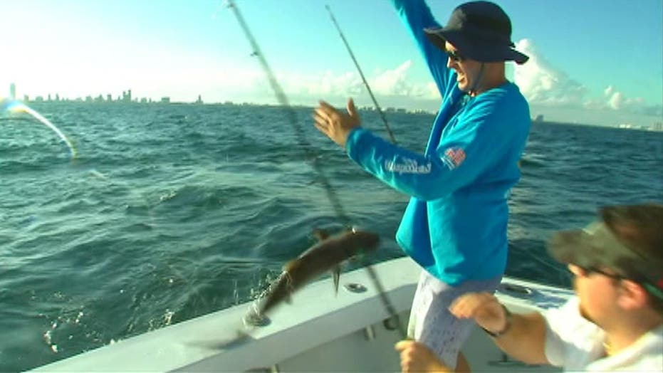 Drop in gas prices helps charter fishermen reel in profits