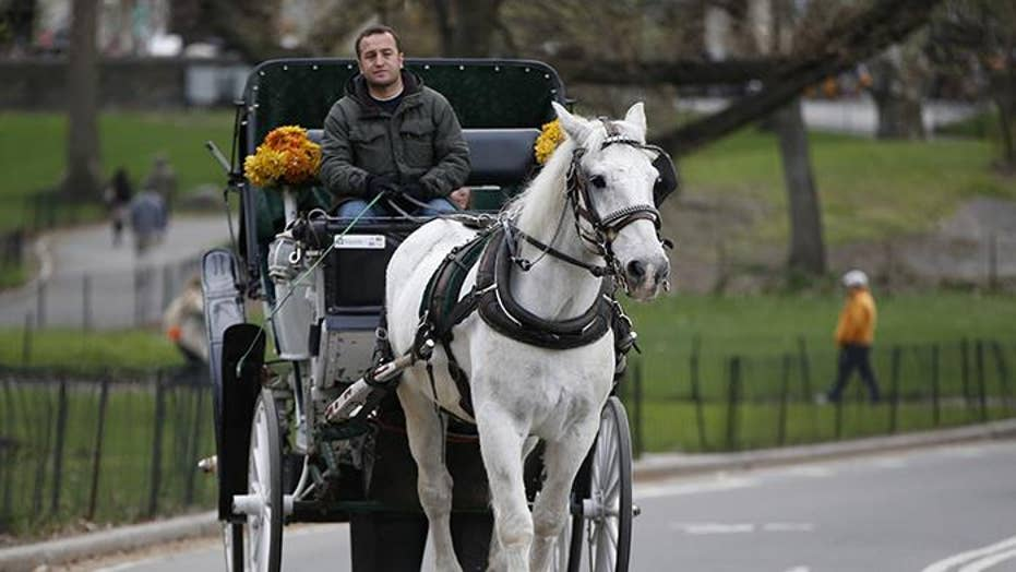 NYC strikes deal to cut number of horse-carriage drivers