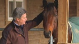 Three day therapy program offers vets time with horses