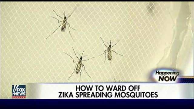 Mosquito blamed for spreading Zika virus found in US