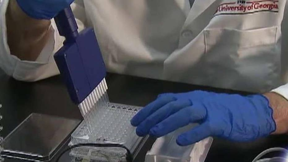 Researcher: Zika vaccine could be ready in two years