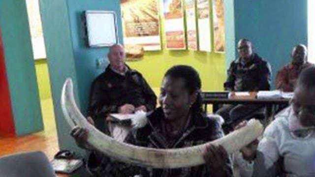 Anti-poaching efforts in Africa go high-tech