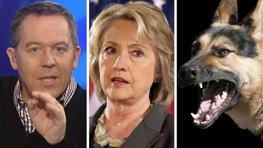 Democratic presidential candidate barks at Republican rivals