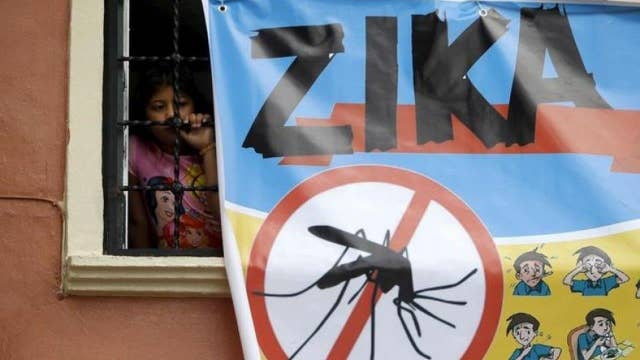 Researchers: Zika virus may increase risk of mental illness