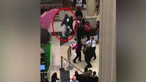 Fists and fur fly in a New Jersey shopping mall