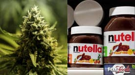 Fox Foodie: The panel discusses Canada's Chrontella, the pot-infused Nutella spread; What the heck is Gwyneth Paltrow's 'Moon Dust' smoothie ingredient?; Starbucks' Caramelized Honey Latte any good?