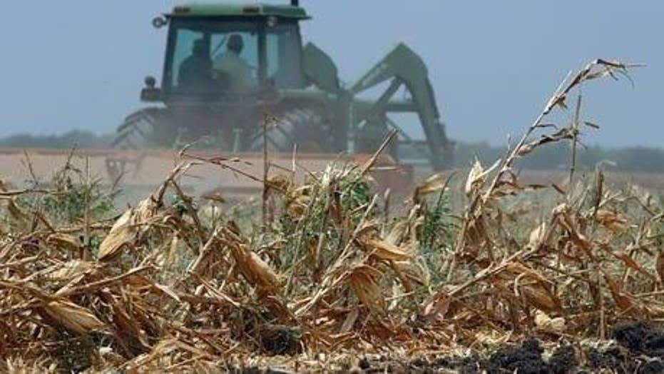 Foreign companies buying farmland in drought-stricken states