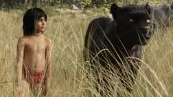 Disney's The Jungle Book has dethroned Avatar as cinema's best-looking D live-action-CGI hybrid extravaganza.