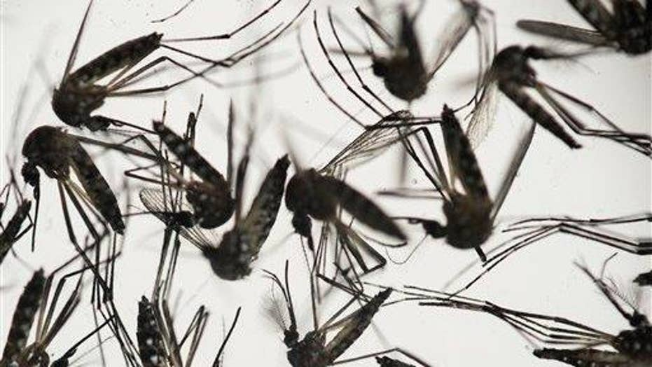 How to best protect against the Zika virus