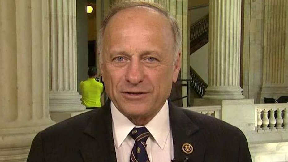 Rep. Steve King clashes with immigration protesters