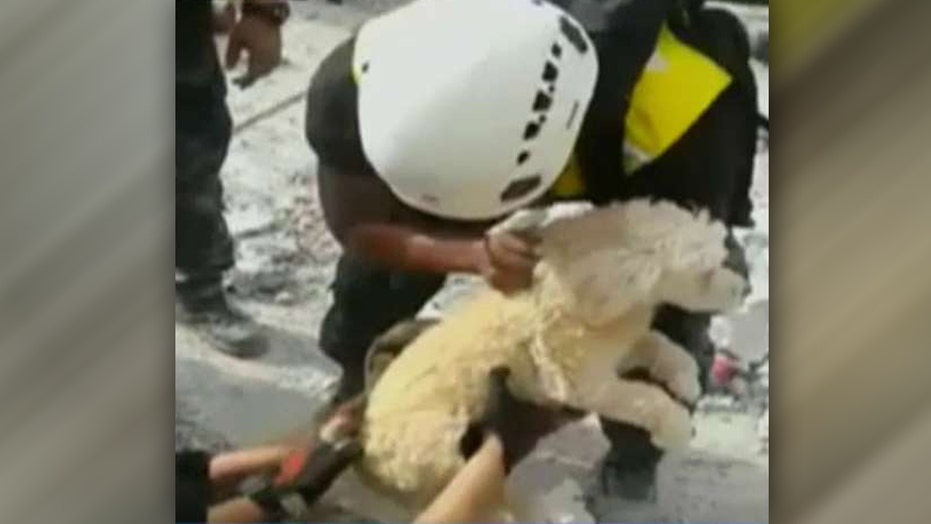 Rescue crews pull dog from rubble in Ecuador earthquake