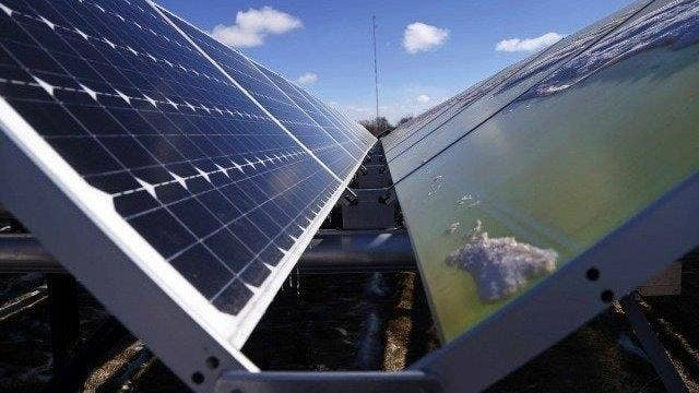 Democrats promote green energy in campaign platforms