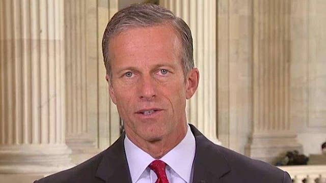 Sen. Thune on Cruz's return to US Senate, supporting Trump