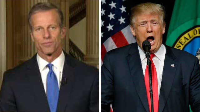 Sen. Thune: I would love to see Trump 'tone it down'