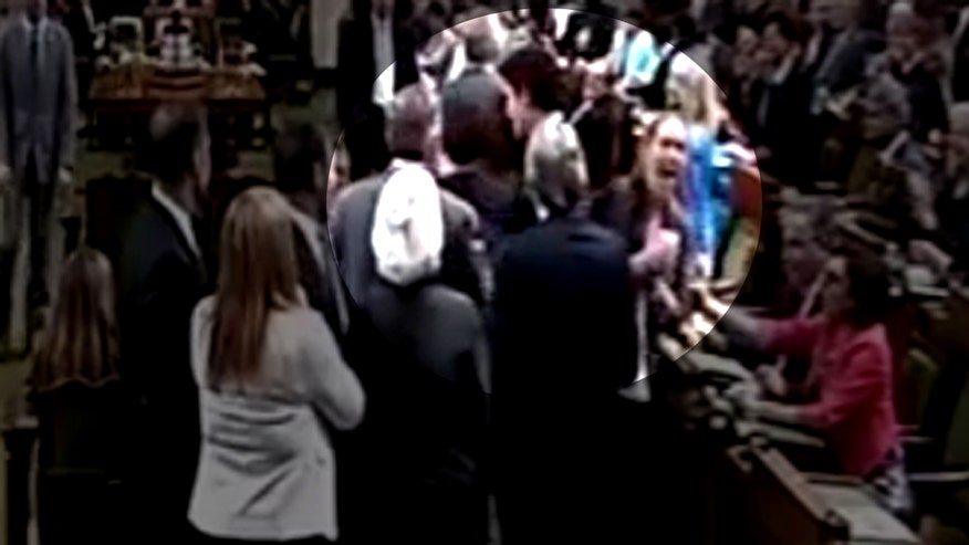 Raw video: Justin Trudeau allegedly makes physical contact with opposition lawmaker when trying to get group back to their seats