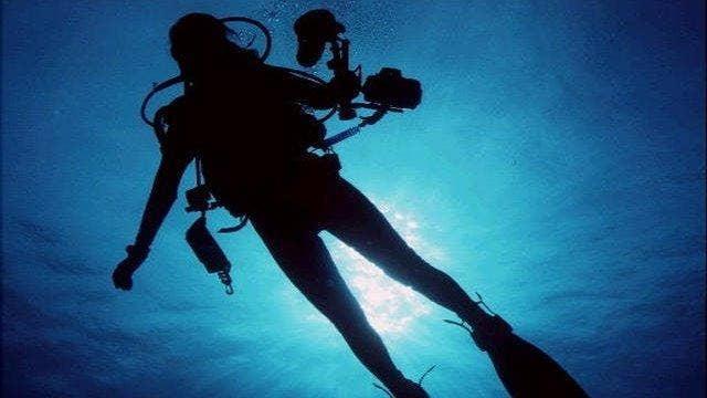 Scuba diver left stranded as sharks circle