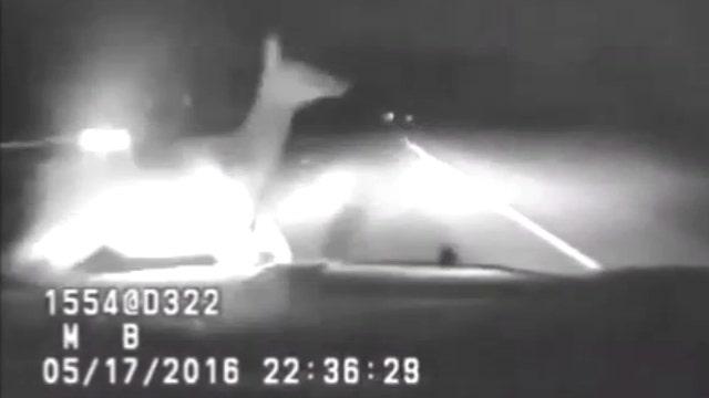 Elk leaps in front of patrol car, crash caught on dash cam