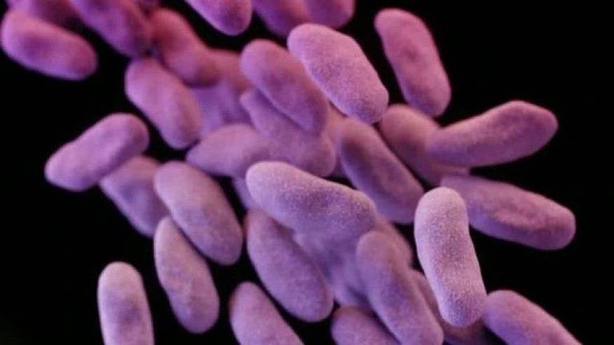 Pennsylvania woman diagnosed with rare form of E. coli