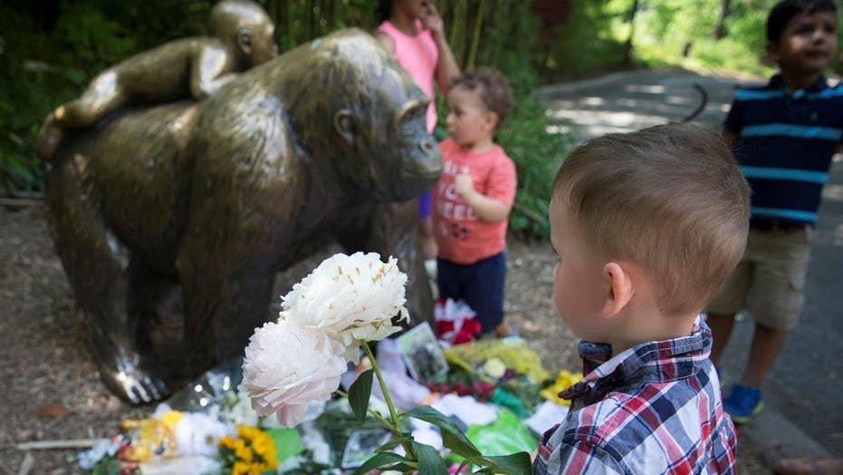 Visitors sound off about the Cincinnati Zoo controversy