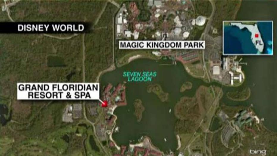 Could Disney be held liable for the alligator attack?