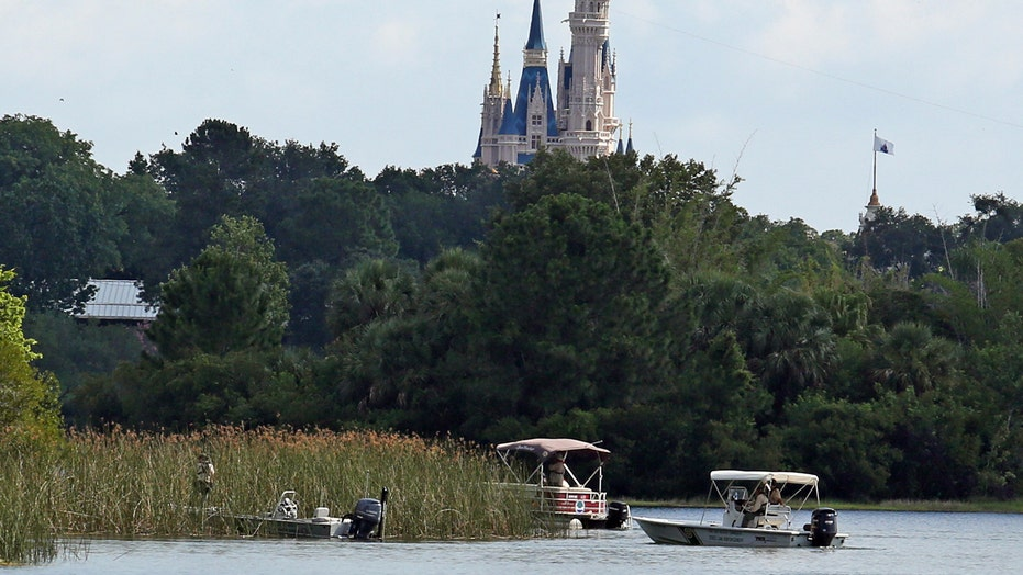 Did Disney do enough to warn its guests about alligators?