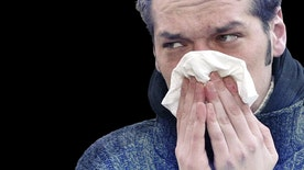 Common allergens can cause problems