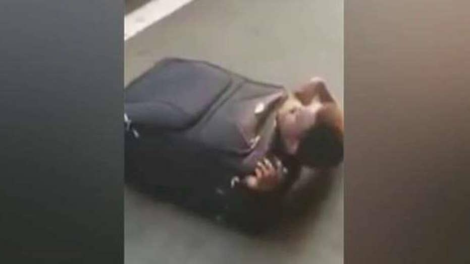 Illegal immigrant found hiding inside suitcase