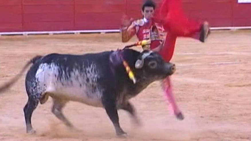 Bull delivered fatal blow to 29-year-old Victor Barrio's chest