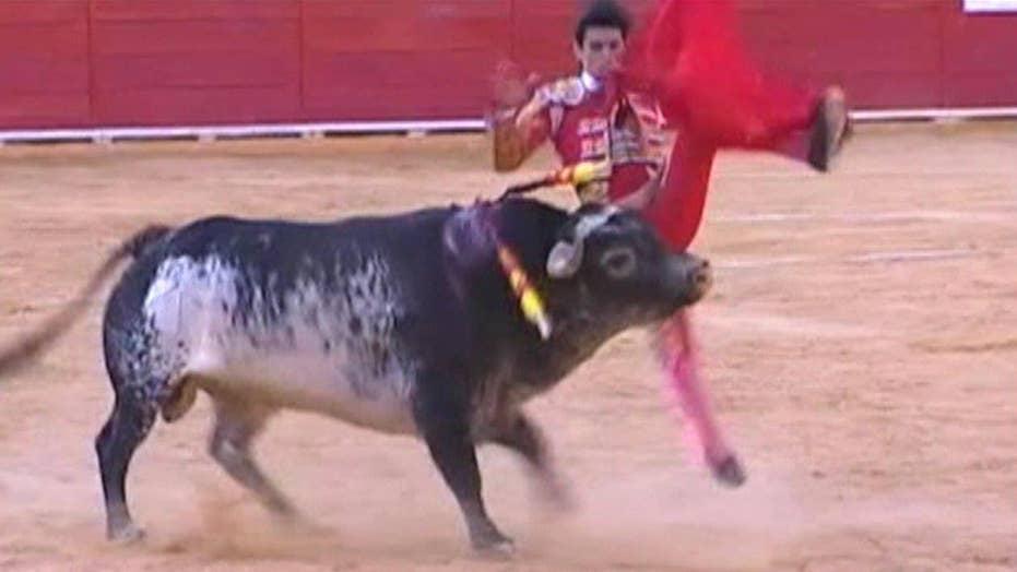 Spanish bullfighter fatally gored on live TV