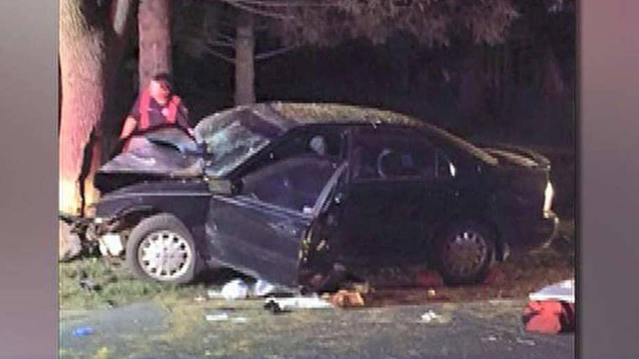 Driver playing 'Pokemon Go' swerves off road, hits tree