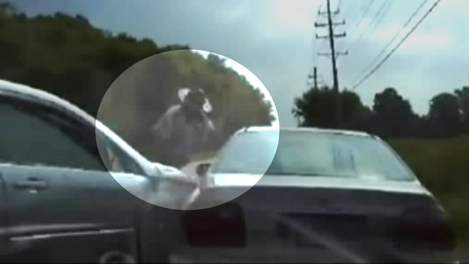 Dash cam shows moment routine traffic stop takes scary turn