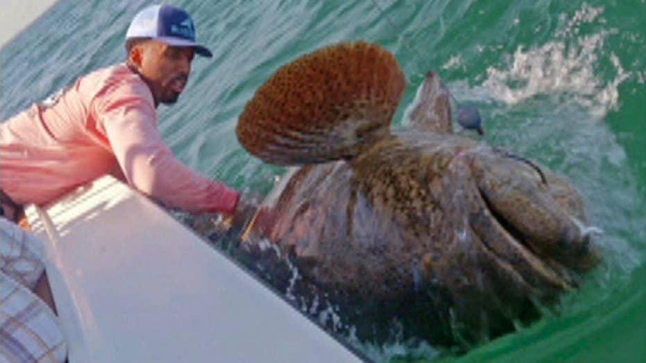 Catch of the day: NBA star wrangles massive fish