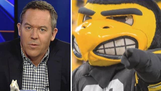 Gutfeld: Angry bird? Professor balks at mean-looking mascot