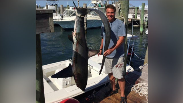 Internet sinks its teeth into Cuomo for killing shark