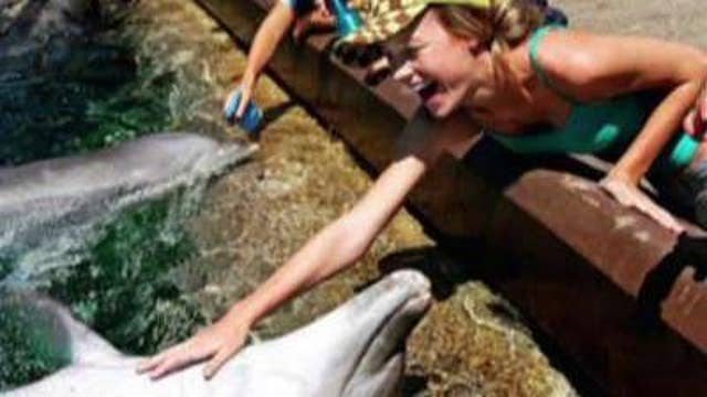 Actress Brie Larson apologizes for petting a dolphin