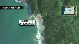 Surfer talked witnesses through rescue