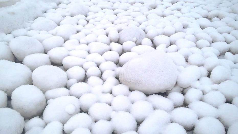 Rare giant 'snowballs' appear on Siberian beach